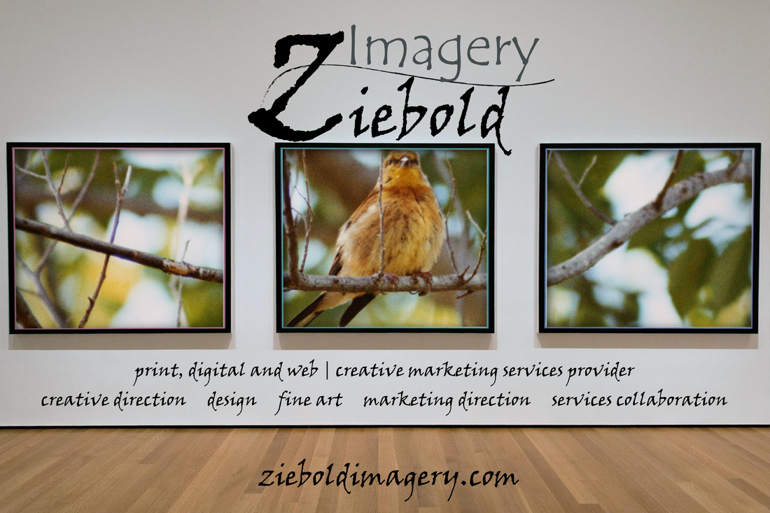 Fine Art to enhance any commercial space! Fine Art by Ziebold Imagery. Your print, digit and web design | creative marketing services provider. Providing creative direction, design, fine art, marketing direction and services collaboration.